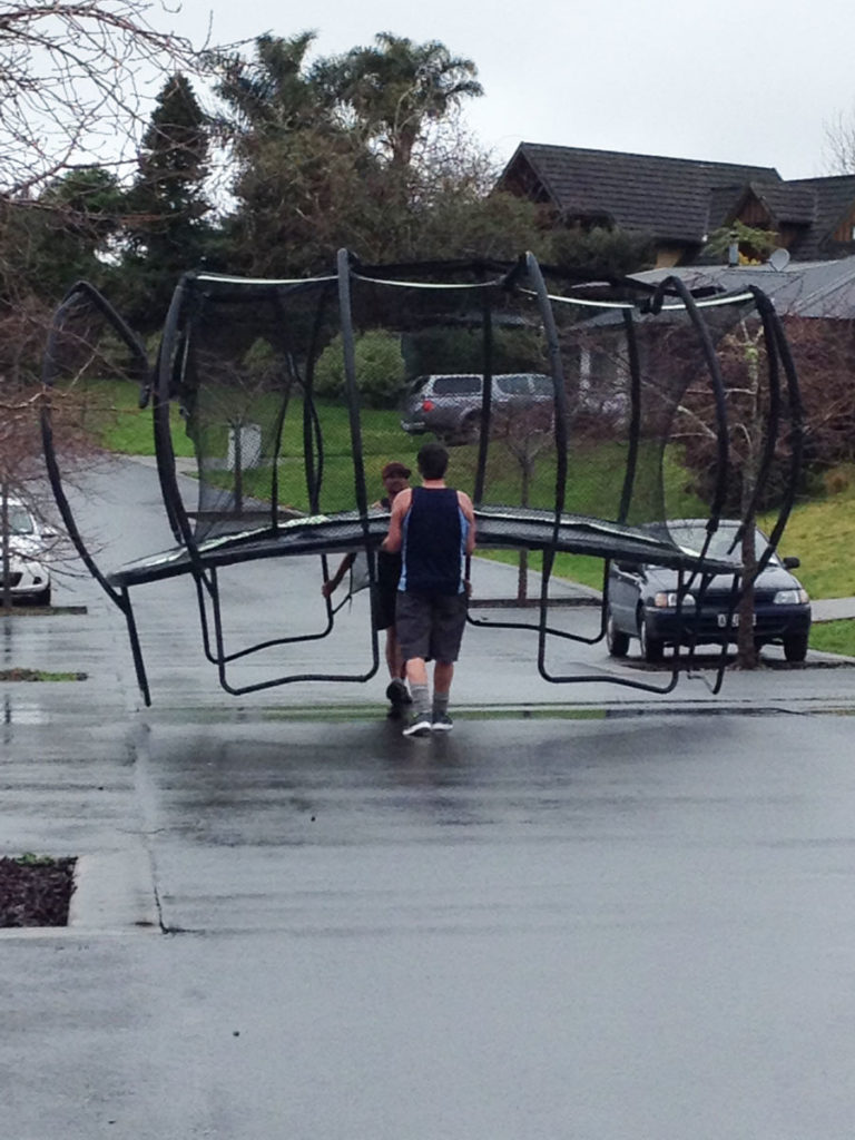 Trampolines are Great Fun